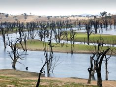8 Mighty Rivers Run Dry From Overuse - Murray River: The Murray is Australia's longest and arguably most important river, stretching for 1,476 miles (2,375 kilometers) from the Australian Alps, across the inland plains to the Indian Ocean near Adelaide.