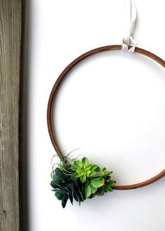 a simple, cheerful succulent wreath tutorial via tag&tibby