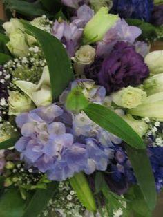 ❥ beautiful purples and greens