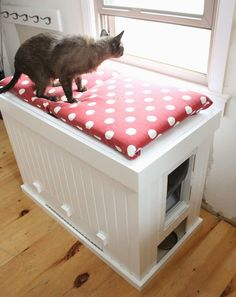 Cat Training Litter Box Sneak a litter box into a comfy window seat, and it won't even feel like you're devoting any precious space to your cats, err, business. - These feline necessities went from eyesore to decor.