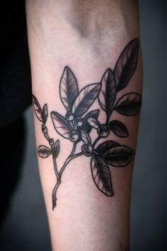 huckleberry tattoo - Google Search