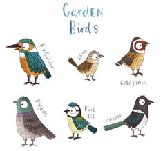 Birds - Brendan Kearney Illustration