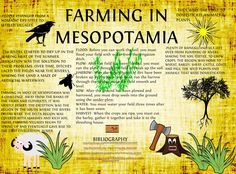 Use math to learn about the problems faced by farmers in ancient Mesopotamia! Grade 6 PBL project | Ratios And Proportional Relationships