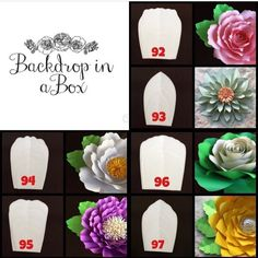 """90 Likes, 3 Comments - Danielle Gonzales (@backdropinabox) on Instagram: """"ENDING THE YEAR WITH A TEMPLATE SALE ‼️‼️‼️‼️ ALL FLOWER TEMPLATES ARE 25% OFF AND GET A FREE WHITE…"""""""