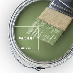 For a classic, cultivated look on your homes exterior walls, choose BEHR MARQUEE Matte Exterior paint. Featuring the most advanced dirt and fade technology available from BEHR that keeps your home looking Green Paint Colors, Paint Colors For Home, House Colors, Sage Green Paint, Kitchen Paint Colors, Best Color For Kitchen, Living Room Paint Colours, Colors For Bathroom Walls, Hallway Wall Colors
