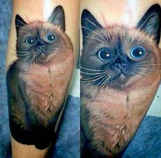 This Incredibly Adorable and R... is listed (or ranked) 1 on the list Amazing Cat Tattoos You Need to Get Now