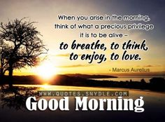 Morning Inspirational Quotes 21 Refreshing Good Morning Quotes Will Make Your Day  Morning .