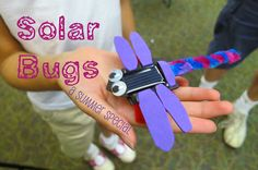 Summer Special: Solar Bugs : library makers