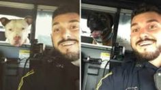 'Dog whisperer' cop helps reunite lost dogs with owners posting 'dog-fies' on…