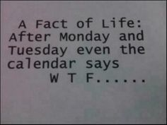A fact of life: After Monday and Tuesday even the calendar says WTF