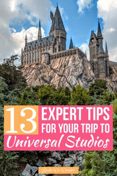 Try these 13 secret tips for Universal Studios Orlando! These 13 (secret) expert tips will help you get free express passes, get free water and snacks, and more! Universal Studios Florida, Universal Studios Orlando Tips, Universal Studios Outfit, Orlando Studios, Orlando Travel, Orlando Vacation, Florida Vacation, Orlando Florida, Cruise Vacation