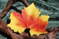 MAPLE/SYCAMORE 9.5 Concrete leaf casting: What a