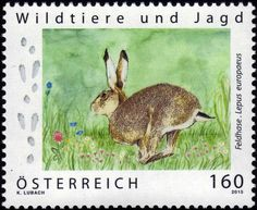 Stamp: European Hare (Lepus europaeus) (Austria) (Wild Animals and Hunting) Mi:AT 3219,Yt:AT 3048,ANK:AT 3248