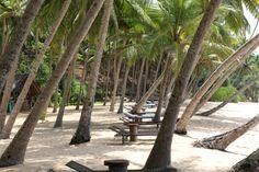 Amanwella Resort in Tangalle, Sri Lanka