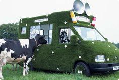 Dancing Grass Van