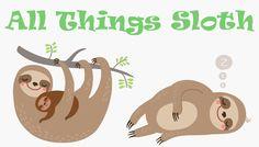 Sloth Logo - All Things Sloth