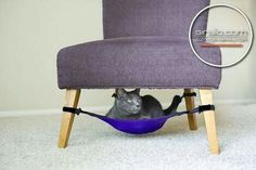 Kitty Cradle Cat Hammock by Greg Hora. A space-saving cat hammock your feline will love! Dog Place, Pet Furniture, Furniture Design, Furniture Ideas, House Furniture, Clever Inventions, Amazing Inventions, Pet Hammock, Crazy Cats
