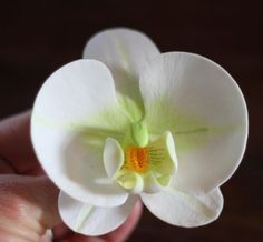 How To Make A Gumpaste Orchid