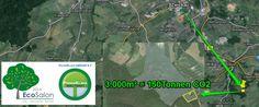 Das davines ecosalon   PrimaKlima - Projekt in der Gemeinde Wilkau-Haßlau in der Nähe von Zwickau. *update 4.300m² = 215 Tonnen CO2 werden eingebunden. (Stand 25.07.14)