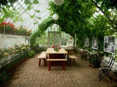 Greenhouse Retreats - I wonder if I could do this between the garage and the breezeway. Outdoor Greenhouse, Cheap Greenhouse, Greenhouse Fabrics, Home Greenhouse, Greenhouse Interiors, Greenhouse Ideas, Greenhouse Restaurant, Homemade Greenhouse, Greenhouse Gardening
