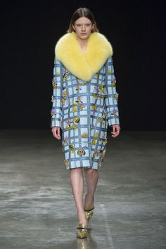 Mary Katrantzou autunno inverno 2017 2018