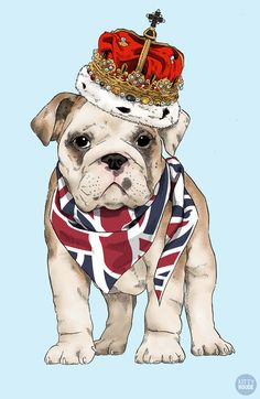 #englishbulldog #england #uk #poster #illustration