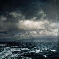 Wild Ocean | Dirk Wuestenhagen via Society6