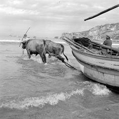 Cenas da Vida Piscatória. Nazaré, década de 50. Old Pictures, Old Photos, Vintage Photos, Northern Ireland Troubles, Nostalgic Pictures, Black And White People, Cool Art, Fun Art, Fishing Boats