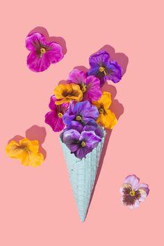 Pansy Cone / Violet Tinder Studios