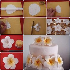 Cake decorating at home photo and … – My Wedding Dream Fondant Flower Tutorial, Fondant Flowers, Sugar Flowers, Cake Tutorial, Cake Decorating Techniques, Cake Decorating Tutorials, Fondant Toppers, Fondant Cakes, Flores Plumeria