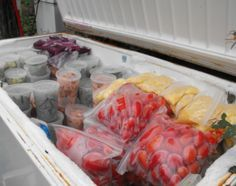 How to Freeze Food // Timeline, tips and tricks to help you save money and avoid wasting food.