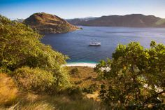 Komodo National Park is located between the islands of Sumbawa and Flores in Indonesia and consists of Komodo, Rinca, Padar and other smaller islands. Komodo National Park, National Parks, Sailing Adventures, Small Island, Water, Outdoor, Gripe Water, Outdoors, Outdoor Games