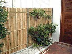 Indoor Garden, Outdoor Gardens, Bamboo Garden Fences, Garden Bar Shed, Bamboo House, Garden Makeover, Private Garden, Fence Design, Outdoor Settings