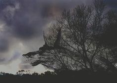 Illustration l dark l Tim Burton Style l Spiegelstaub Fotografie l Carina Gall
