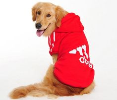 Big Dog Hoodie Sweater. Cotton, Sizes 3XL to 9XL
