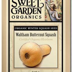 Waltham Butternut Squash from The Scribbled Hollow for $2.89 on Square Market