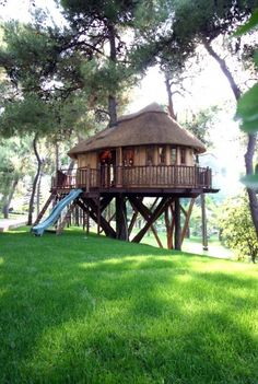 tree house with slide.
