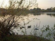 Malchower See (Berlin) – Wikipedia