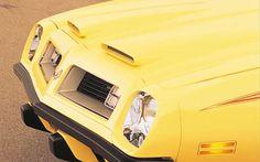 1975 Pontiac Firebird Formula hood
