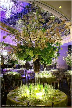 """All my wedding flowers: Jerry Sibal - Design Fusion; """"An Event To Remember Bridal Decorations, Flower Decorations, Floral Centerpieces, Wedding Centerpieces, Centrepieces, Floral Wedding, Wedding Flowers, City Flowers, Tent Reception"""