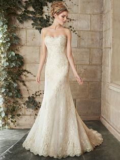 The gold thread accents in this Maggie Sottero gown are so on trend! Make your appointment at Savvy Bridal to see this gown in person! We carry it in a size 10 for $1300 (it retails for $1649)!  . . . #savvybridal #affordyourdreamdress #designergownforless #offtherack #sayyestothedress #kansascitybride #kcbride #kansascitywedding #kcwedding #kcbridalshop #kansascitybridalshop #kansascitybridalboutique #engagedinkc #weddingseason #missouribride #kansasbride #midwestwedding #love #engaged