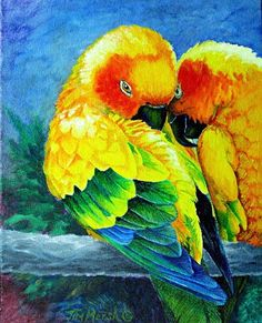 Sun Conures by Tim Marsh Oil ~ 15 inches x 12 inches