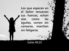 #biblia #citas #versículos #paciencia #fe #esperanza