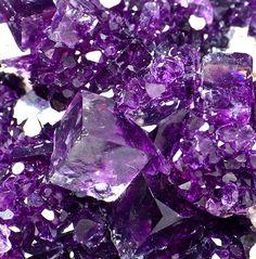 mineralists:  Purple Fluorite cluster from Japan