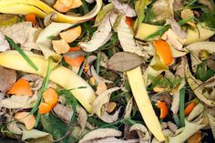 Before you toss another orange or banana peel into the trash, stop and think about the potential benefits you may be throwing away. Like other kitchen scraps, these peels can be added to the compost . Veg Garden, Garden Pests, Garden Web, Balcony Garden, Organic Gardening, Gardening Tips, Gardening Vegetables, Container Gardening, Peau D'orange