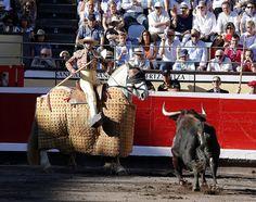 En el tercio de varas se ahorma la embestida del toro.