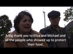 Raid in Progress at Michael Schmidt's Glencolton Farm 11:56 am on Friday October 2, 2015 | NonConFormizt