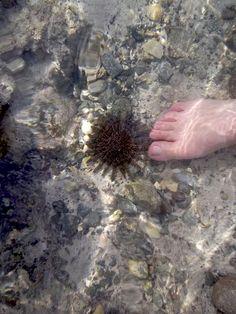 Sol de Mar y mi pie. La Paz BCS
