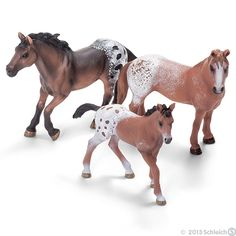 Appaloosas are typical western horses with striking fur speckles.