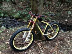 FAT BIKE  .......WOW